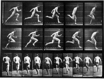 muybridge_running